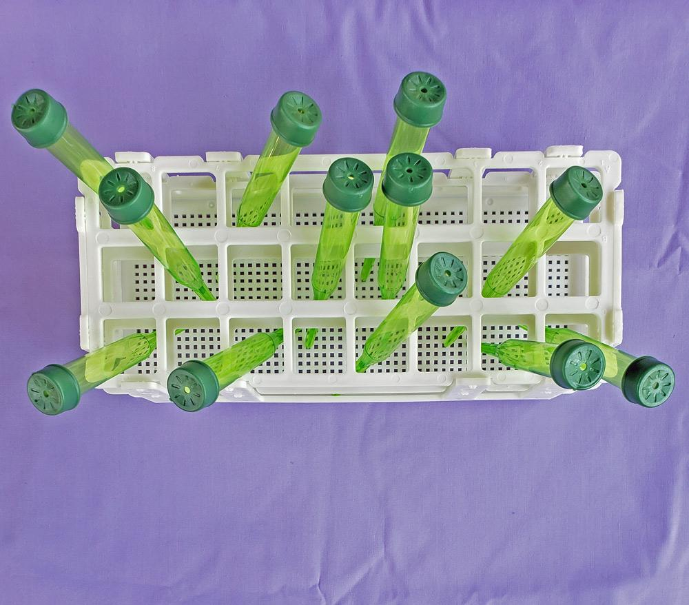 keep floral tube picks secure for feeding hungry caterpillars host plants with a floral tube rack