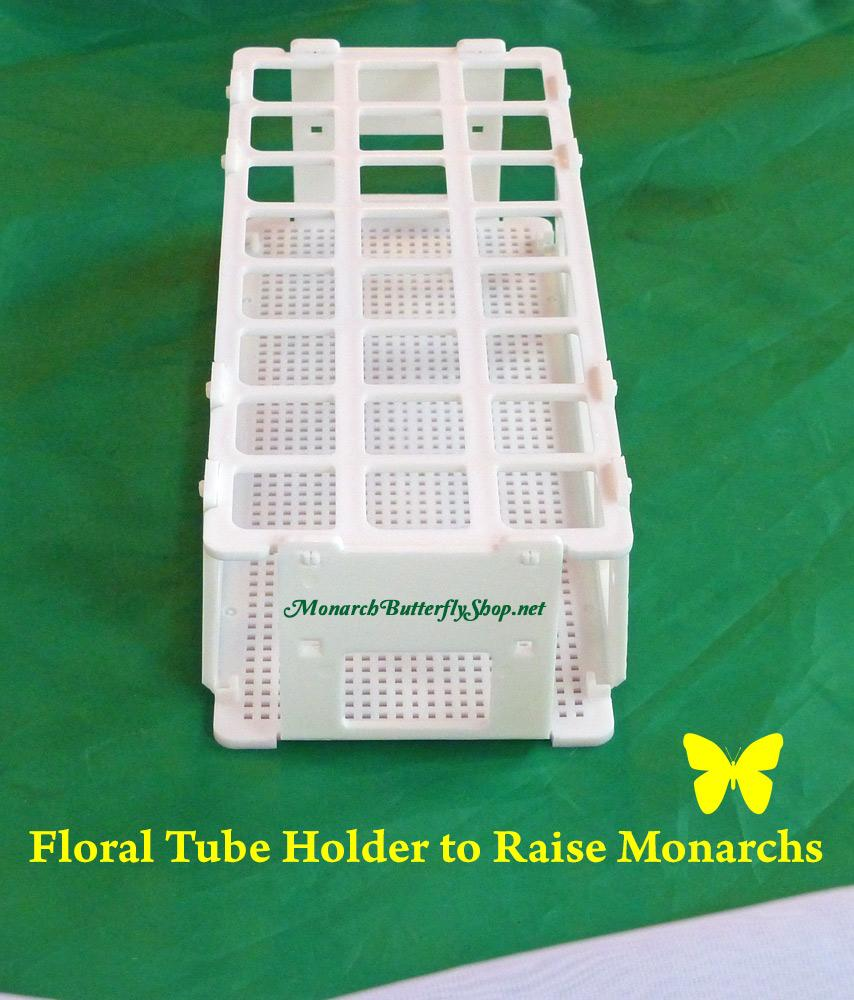 Floral Tube Rack and Holder for Milkweed Cuttings