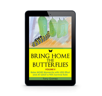 How To Raise Monarch Butterflies Book- Instant Download