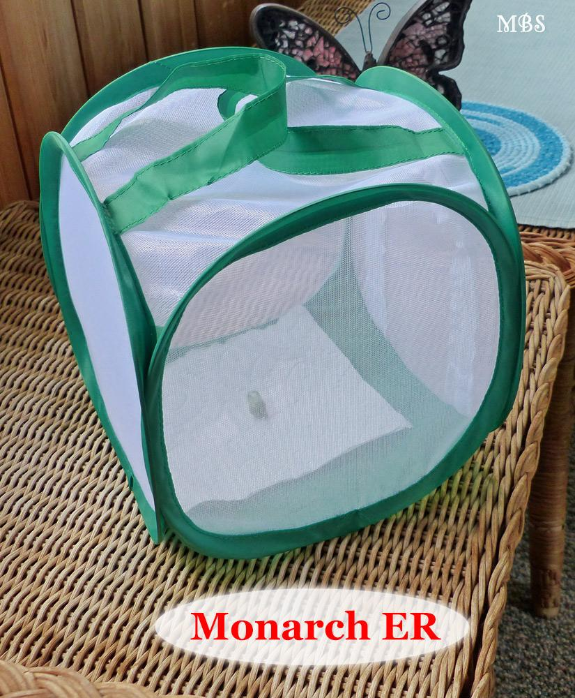a small cage for birthing butterflies and nursing sick caterpillars.