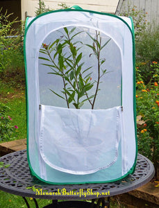 Monarch Tower Butterfly Cage w/ Drawbridge Door for Potted Milkweed Plants