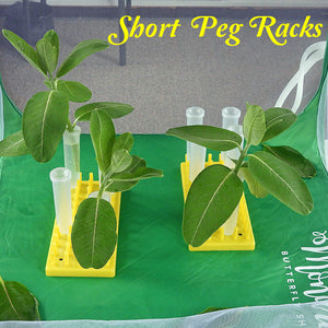 short peg racks that securely hold large floral tubes to keep milkweed and host plants fresh to feed caterpillars for days