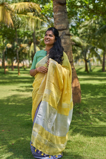 Linen Cotton Partly Saree - Indianloom