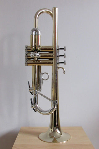 Tromba Plastic Trumpet Trumpet Gold and Silver