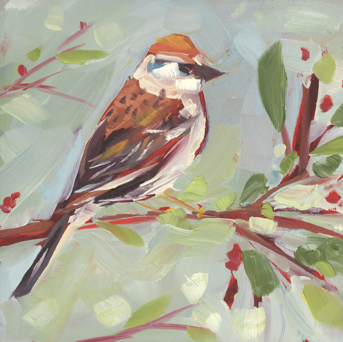 1380: Hey Chipping Sparrow, I See You