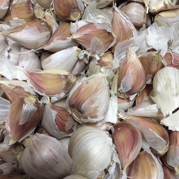 Porcelain Garlic Cracked Cloves