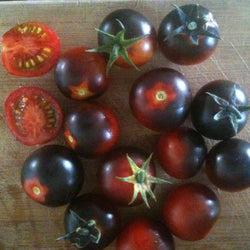 Tomate Cerise / Cherry Tomato - Dancing with Smurfs