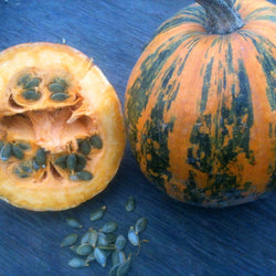 Lady Godiva Hulless Seeded Pumpkin