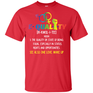 Pride Day LGBT Definition of Equality Gay Pride T-Shirt