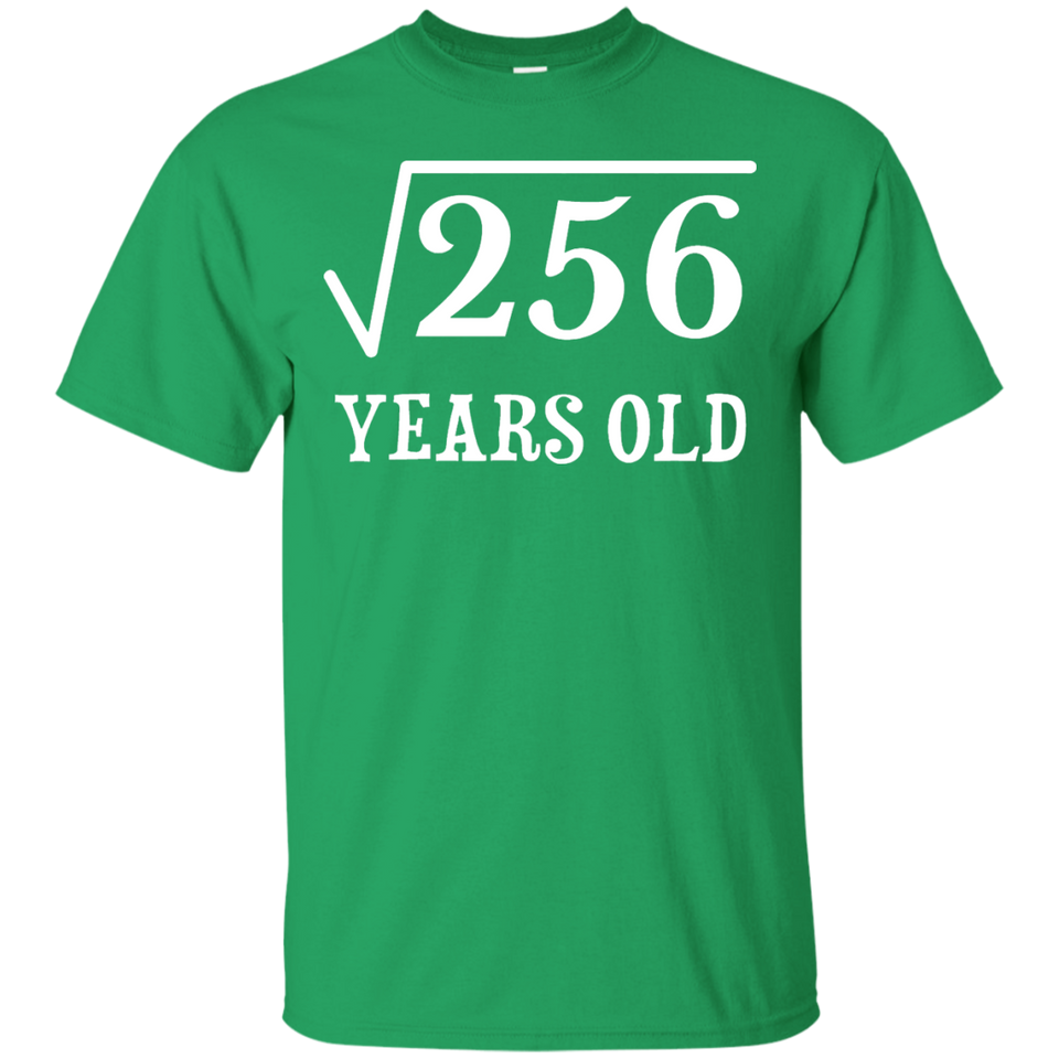 Square Root of 256 16 yrs years old 16th birthday T-Shirt