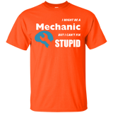 I Might Be A Mechanic But I Can't Fix Stupid T-shirt