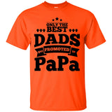 Only The Best Dads Get Promoted To Papa T Shirt