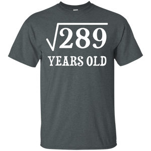 Square Root of 289 17 yrs years old 17th birthday T-Shirt