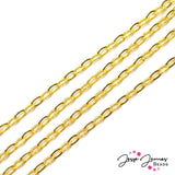 Bitty Big Oval Chain in Gold