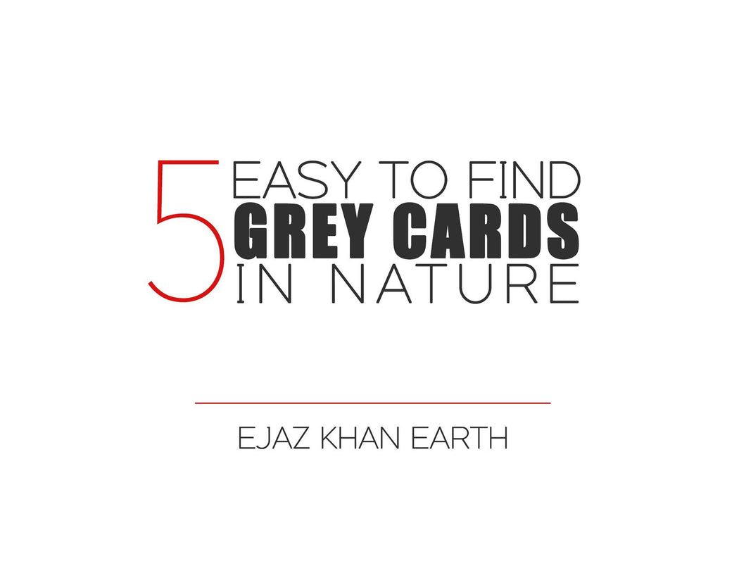 FREE | 5 Easy To Find Grey Cards In Nature EBook - EJAZ KHAN EARTH