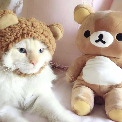 bear hat for cats