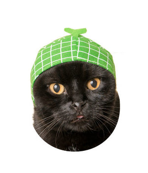 Fruit Hat for Cats (Kawaii kawaii Neko Fruit-chan)