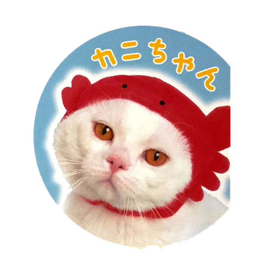 Marine Hat for Cats (Kabutte Marine Animal Nyanko)