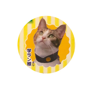 School Collars for Cats (Neko no Kubiwa Collection - Nanko-gakuen)