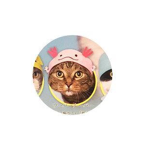 Aquarium Hat for Cats (Kawaii Kawaii Neko Aquarium)