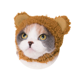 Bear Hat for Cats (Kawaii kawaii Neko Kuma-chan)