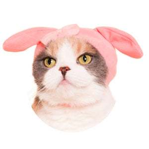 Sanrio Hat for Cats (Kawaii kawaii Neko Sanrio Characters)