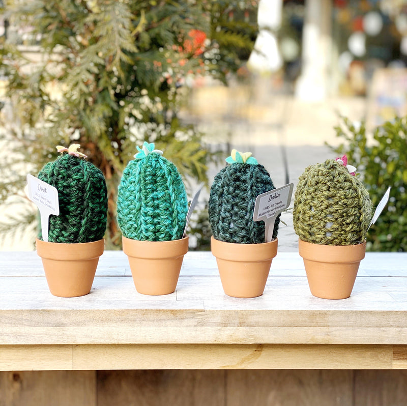 Crochet Cactus group of 4