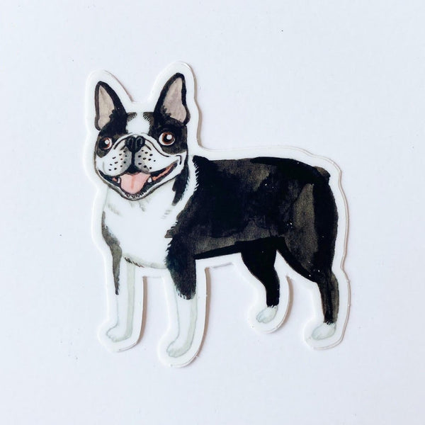 Boston Terrier animal Sticker