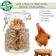 100% Non-GMO Dried Mealworms 🐛 10 lb - Picky Neb