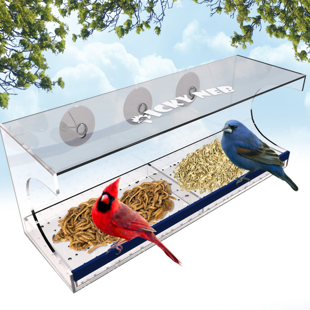 feeder hanging bird acrylic feeders zoom clear listing fullxfull il