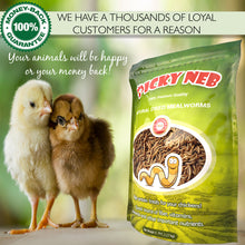 100% Non-GMO Dried Mealworms 🐛 5 lb - Picky Neb