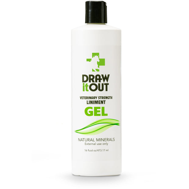 Case of 12 Draw It Out Horse Liniment 16oz Gel (472363401253)