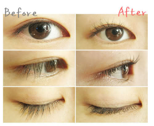 Importance of The Eyelash Curler and The Extensions – An Overview