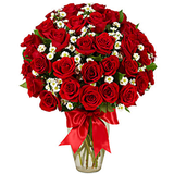 3 Dozen Long Stem Red Roses