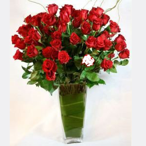 4 Dozen Long Stem Red Roses