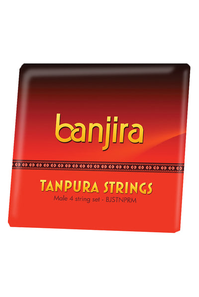 banjira Male Tanpura String Set - Tanpura Accessories - BJSTNPRM