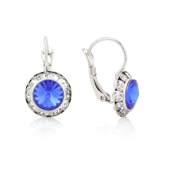 Silver-Tone Blue Crystal Earrings Gift For Her