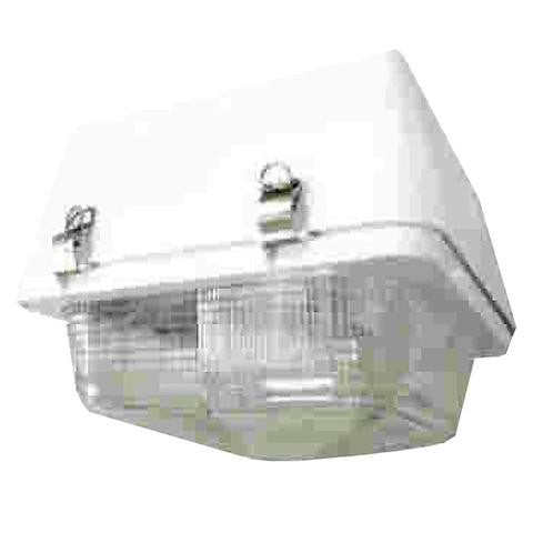 AEI Lighting 120W Gas Station Max Induction Fixture with Lamp