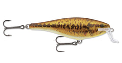 Rapala Color SBL-Live Smallmouth Bass