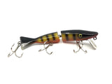 Radtke Pike Minnow Rainbow Color