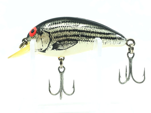 Bomber Model A XBS Baby Striper Color