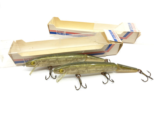 Lot of Two Rebel Jointed Minnow Walleye Color With Boxes