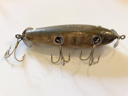 Creek Chub Injured Minnow Tack Eye