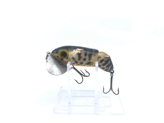 Arbogast Jointed Jitterbug Coachdog Color