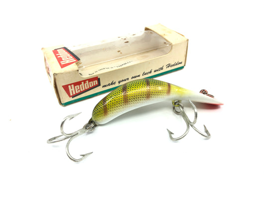 Heddon Magnum Tadpolly 9006L Perch Color with Box