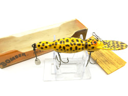 Bomber Waterdog in Box Yellow Coachdog Color