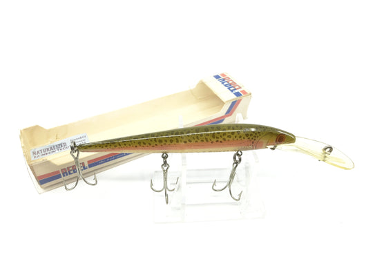 Rebel Spoonbill Minnow Naturalized Rainbow Trout Color with Box