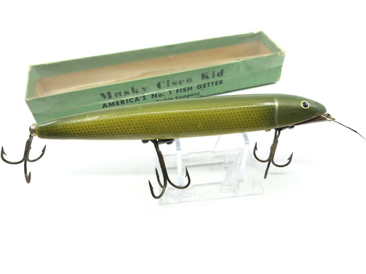 Walsten Musky Cisco Kid with Box 602 Pike Color