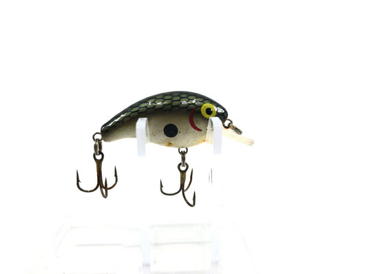 Rebel Super Teeny Wee R Tennessee Shad