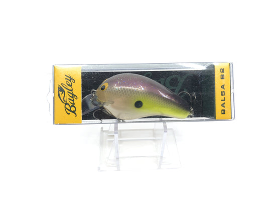 Bagley B2 Square Bill Sexy Shad Old Version Color BB2-SS New in Box OLD STOCK2